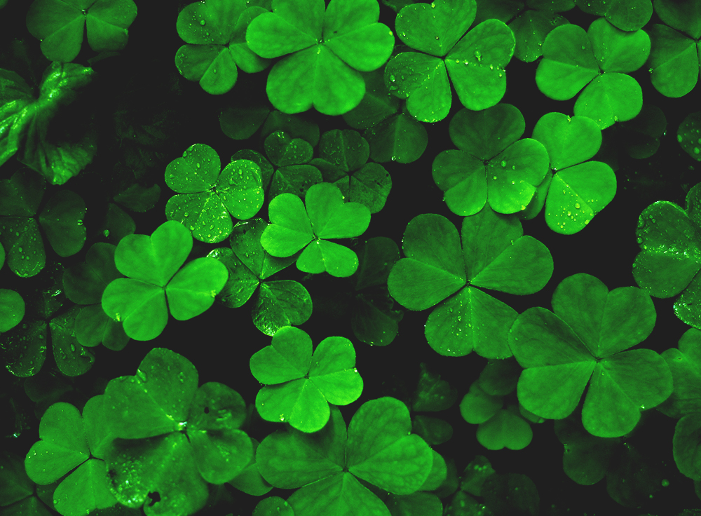 7bf9ef4b Why All Christians Should Celebrate St. Patrick's Day | RELEVANT ...
